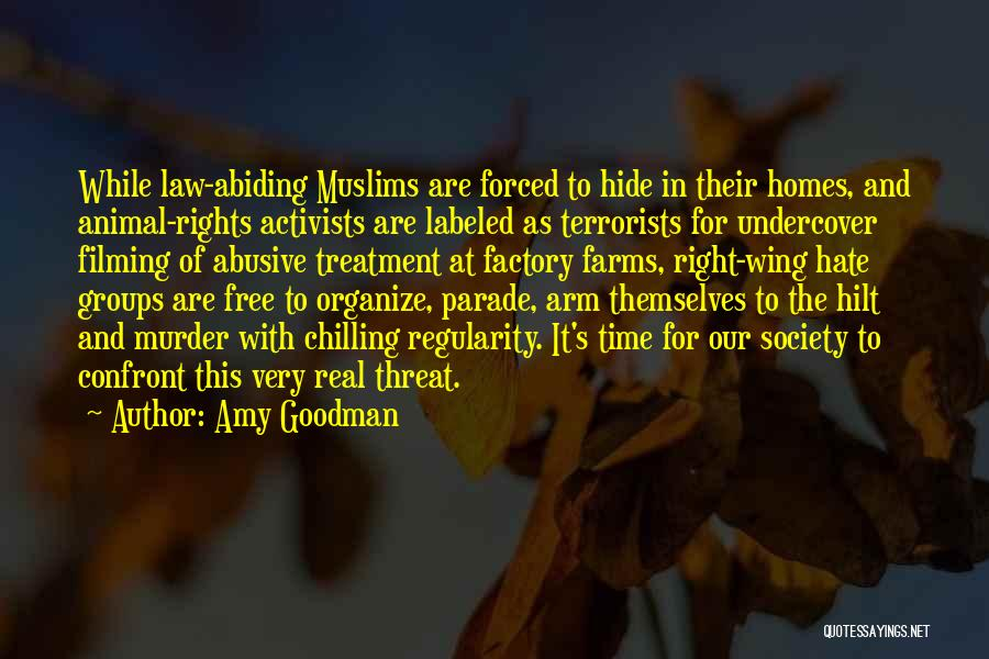 Filming Quotes By Amy Goodman