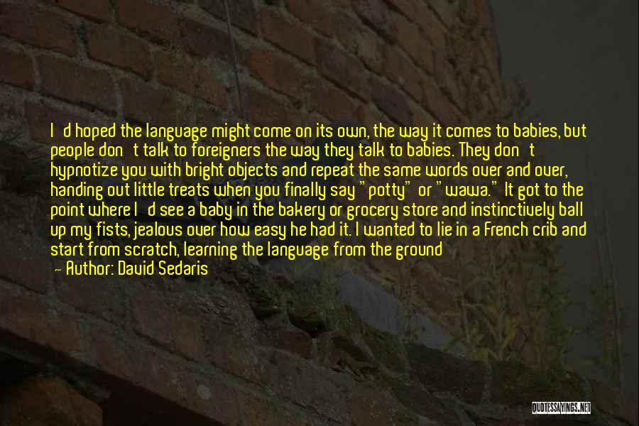 Finally Got To See You Quotes By David Sedaris