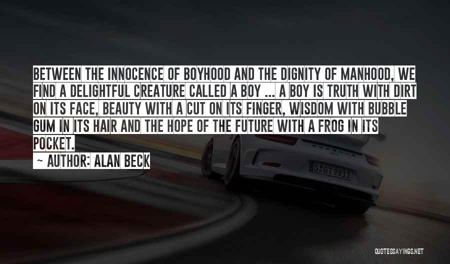 Find The Beauty Quotes By Alan Beck