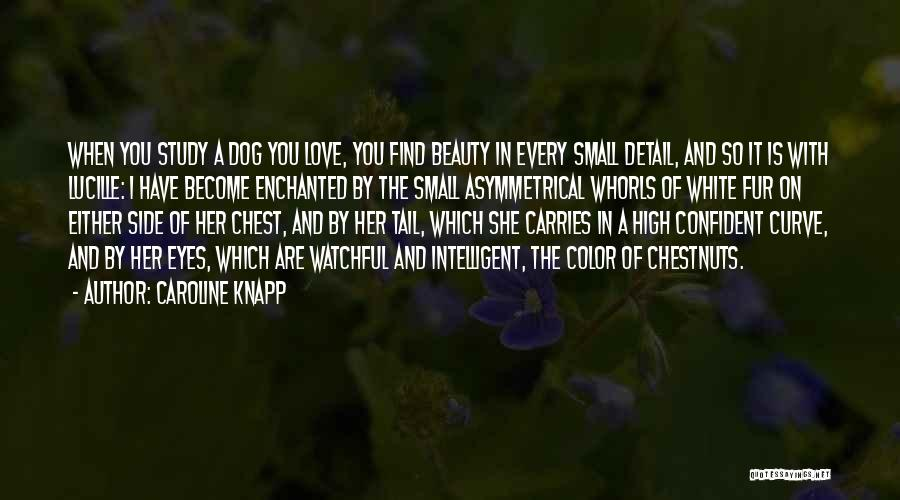 Find The Beauty Quotes By Caroline Knapp