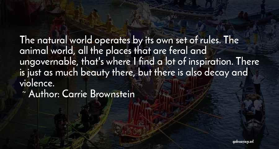 Find The Beauty Quotes By Carrie Brownstein