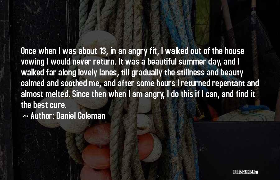 Find The Beauty Quotes By Daniel Goleman