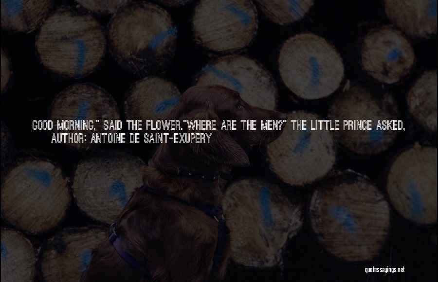 Find The Good In Goodbye Quotes By Antoine De Saint-Exupery