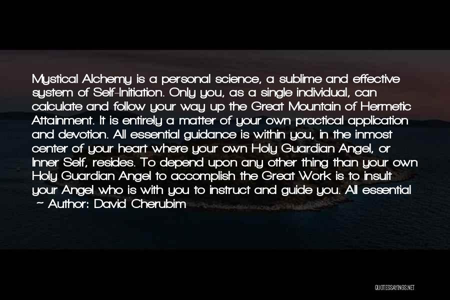 Find Your Own Truth Quotes By David Cherubim