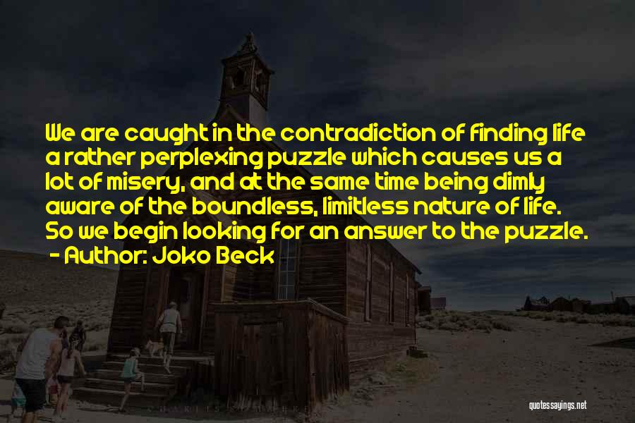 Finding An Answer Quotes By Joko Beck