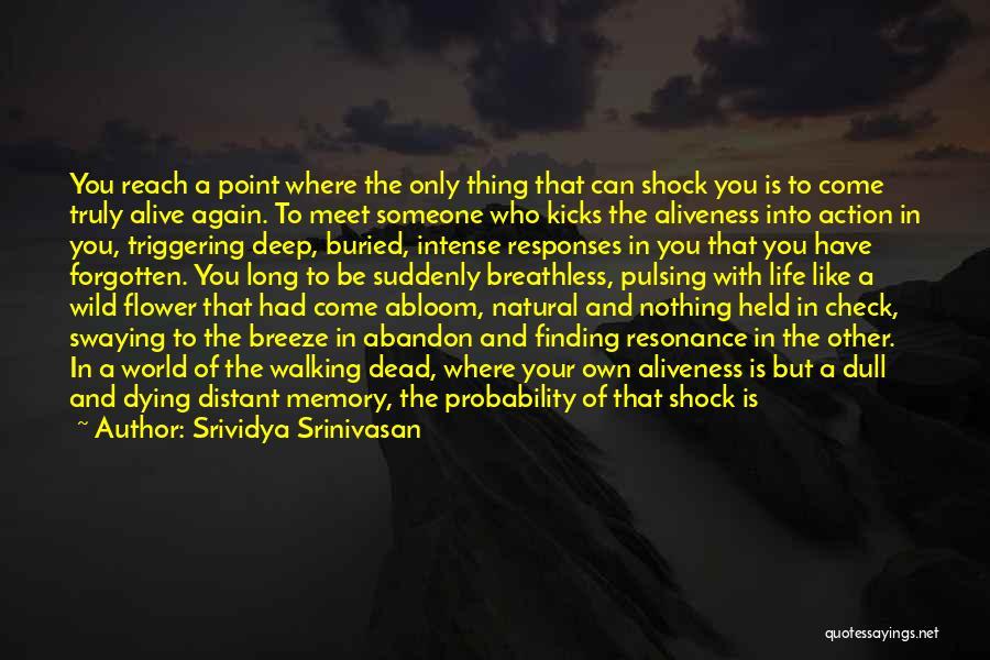 Finding Someone Again Quotes By Srividya Srinivasan