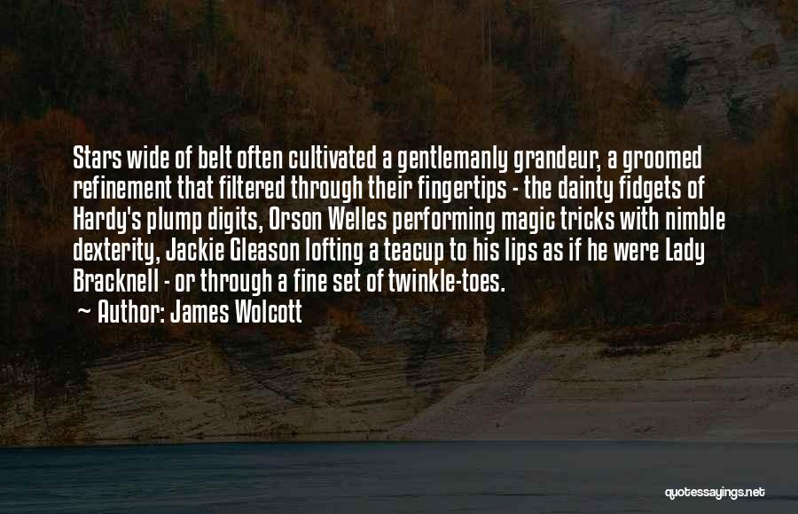 Fine Lady Quotes By James Wolcott