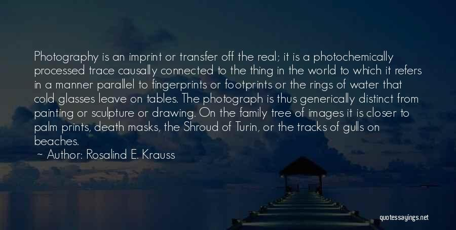 Fingerprints Quotes By Rosalind E. Krauss