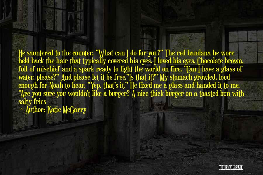 Fire And Ice Quotes By Katie McGarry