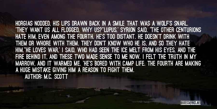 Fire And Ice Quotes By M.C. Scott