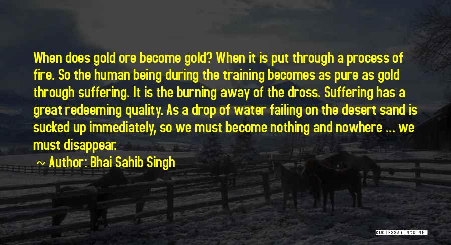 Fire And Water Quotes By Bhai Sahib Singh