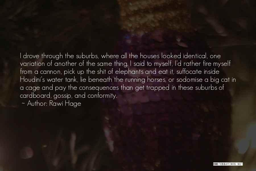 Fire And Water Quotes By Rawi Hage