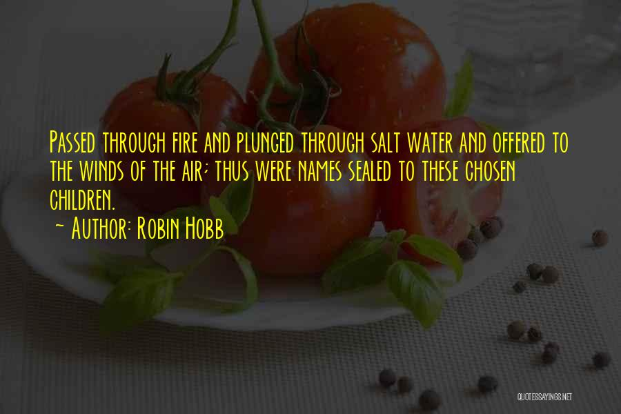 Fire And Water Quotes By Robin Hobb