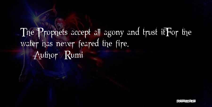 Fire And Water Quotes By Rumi