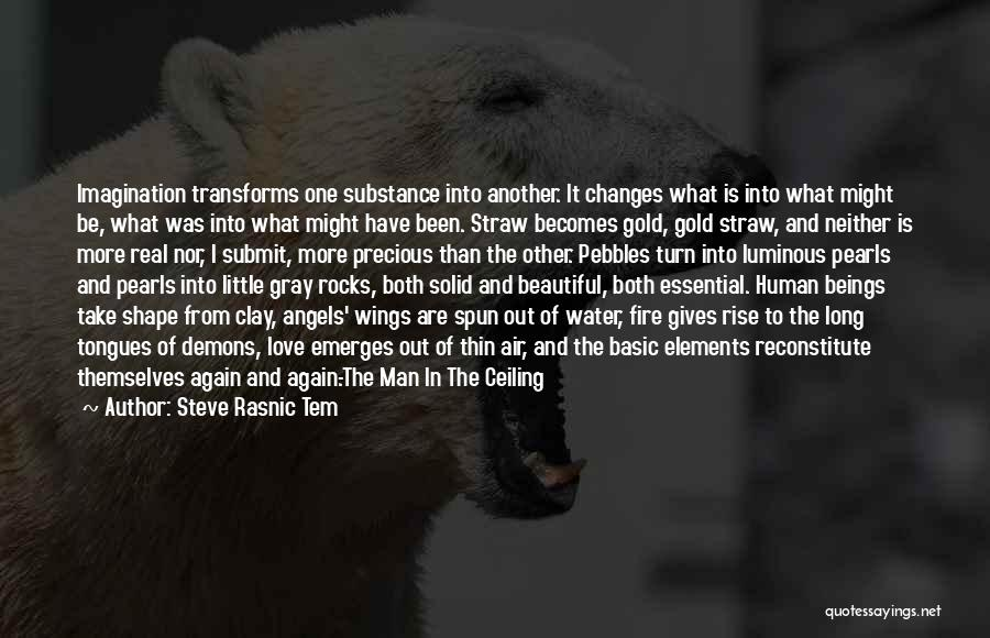 Fire And Water Quotes By Steve Rasnic Tem