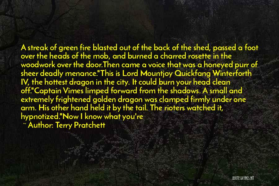 Fire Captain Quotes By Terry Pratchett