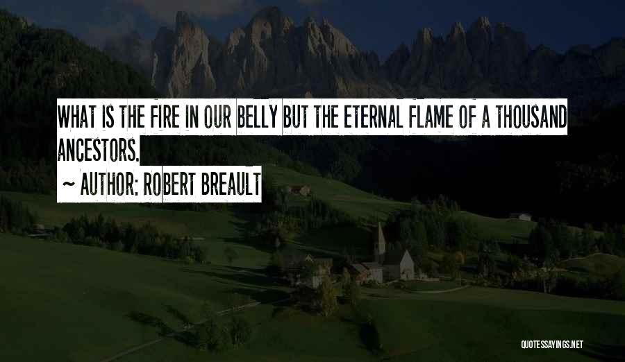 Fire In My Belly Quotes By Robert Breault