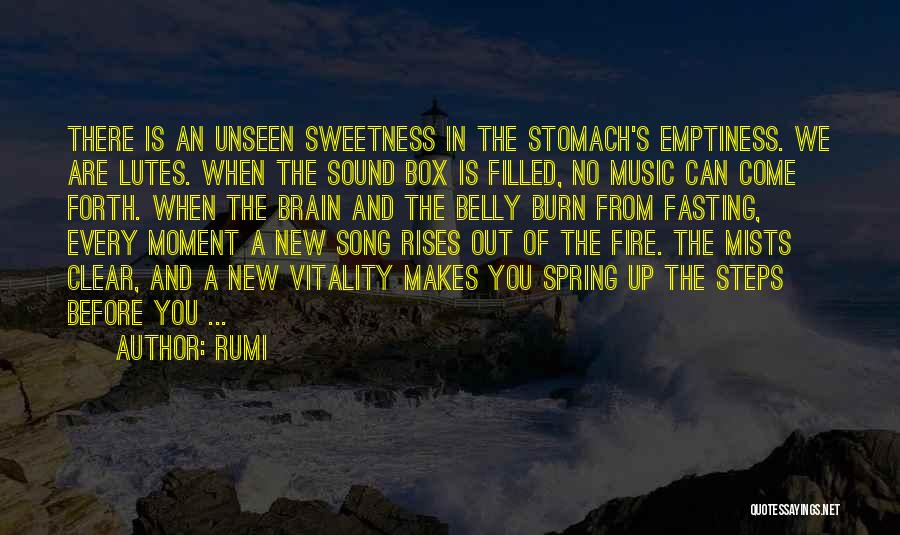 Fire In My Belly Quotes By Rumi