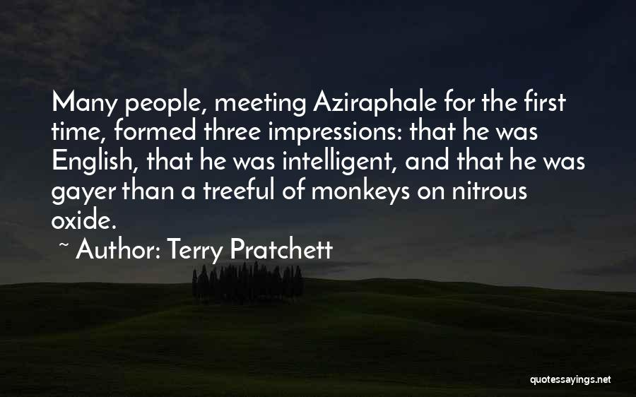 First Impressions Quotes By Terry Pratchett