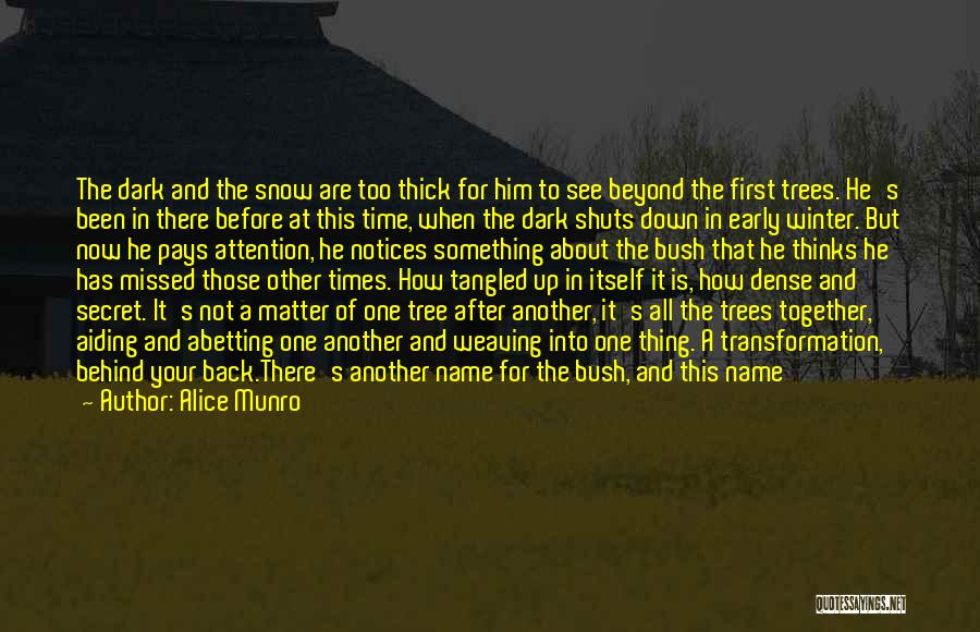 First Snow Quotes By Alice Munro
