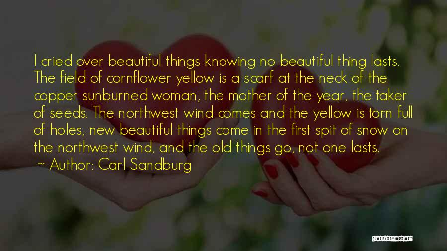 First Snow Quotes By Carl Sandburg