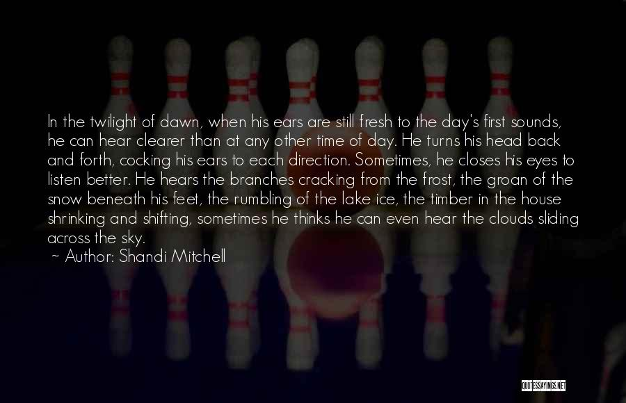 First Snow Quotes By Shandi Mitchell