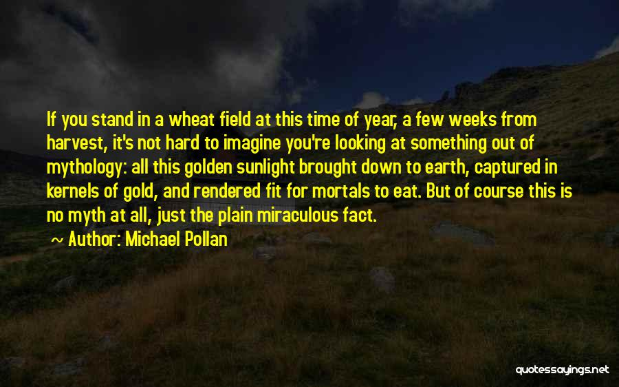 Fit In Stand Out Quotes By Michael Pollan