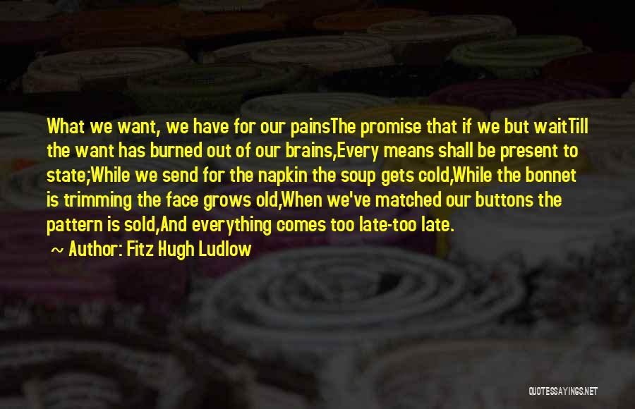 Fitz Hugh Ludlow Quotes 723621