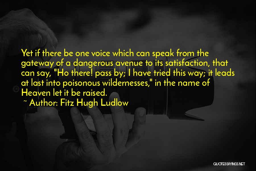Fitz Hugh Ludlow Quotes 89939