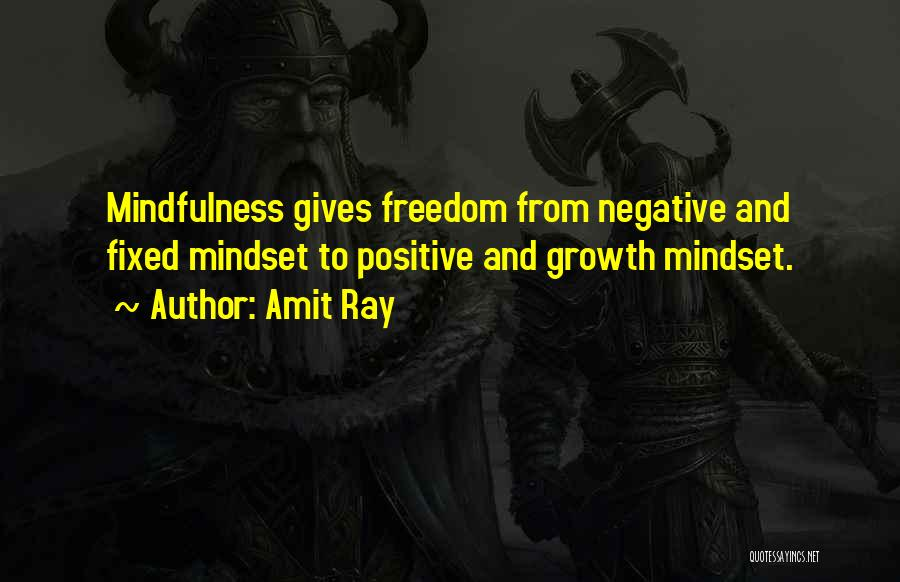 Fixed Mindset Quotes By Amit Ray
