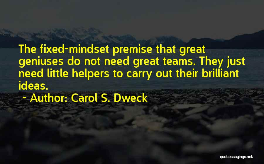 Fixed Mindset Quotes By Carol S. Dweck