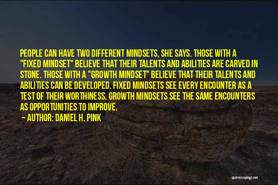 Fixed Mindset Quotes By Daniel H. Pink