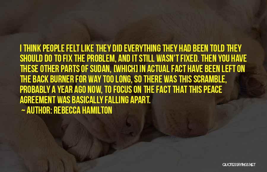Fixed Problem Quotes By Rebecca Hamilton