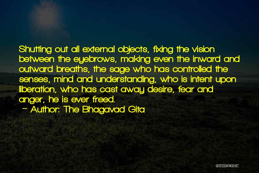 Fixing Someone Quotes By The Bhagavad Gita