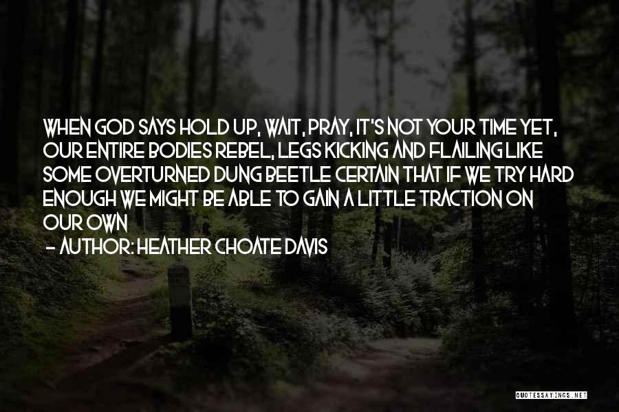 Flailing Quotes By Heather Choate Davis