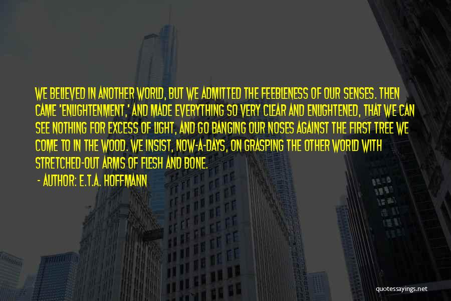 Flesh And Bone Quotes By E.T.A. Hoffmann