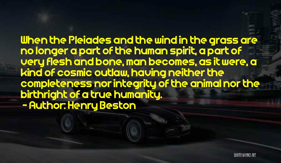 Flesh And Bone Quotes By Henry Beston