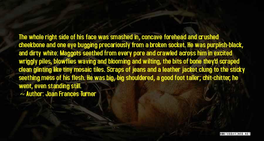 Flesh And Bone Quotes By Joan Frances Turner