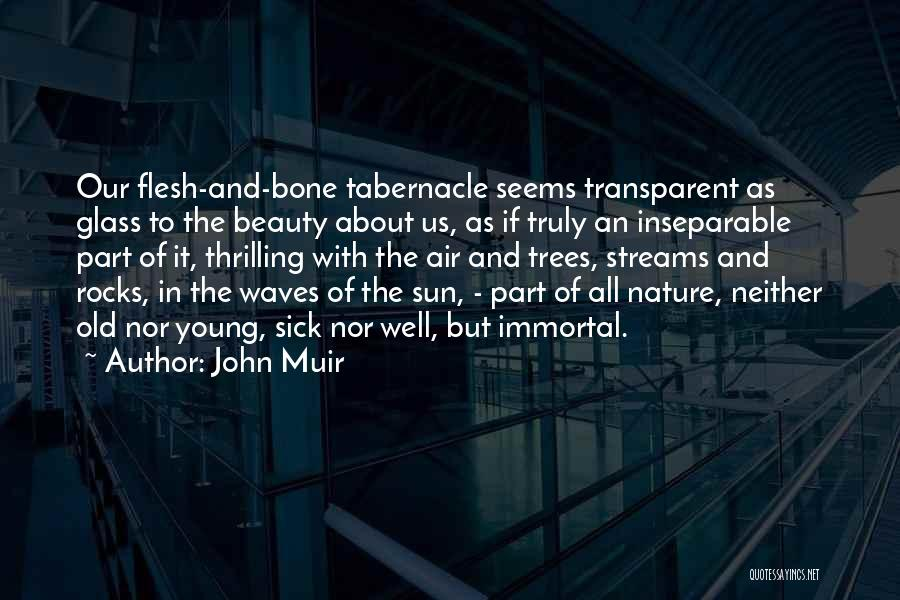 Flesh And Bone Quotes By John Muir