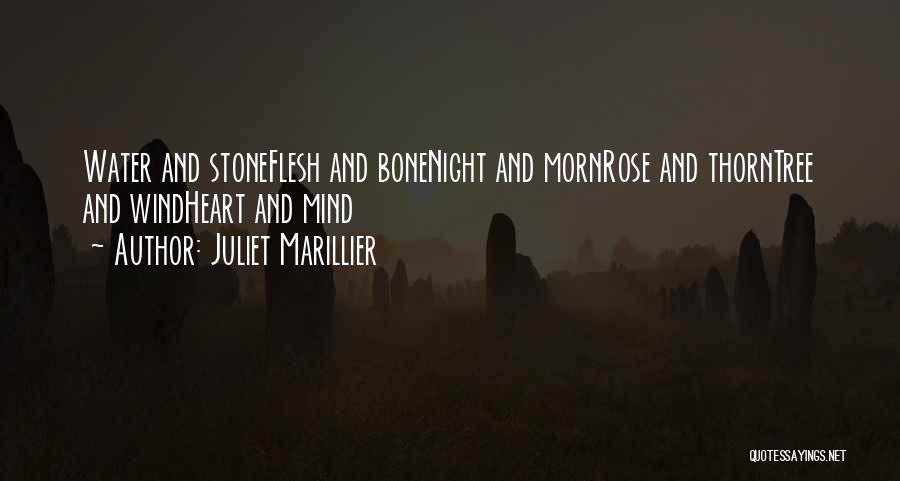 Flesh And Bone Quotes By Juliet Marillier