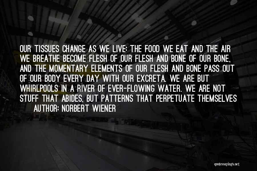 Flesh And Bone Quotes By Norbert Wiener