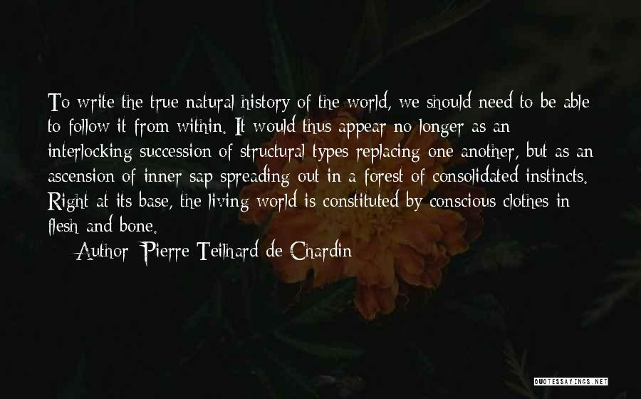 Flesh And Bone Quotes By Pierre Teilhard De Chardin