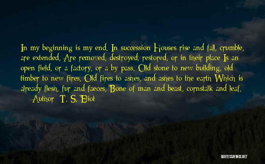 Flesh And Bone Quotes By T. S. Eliot