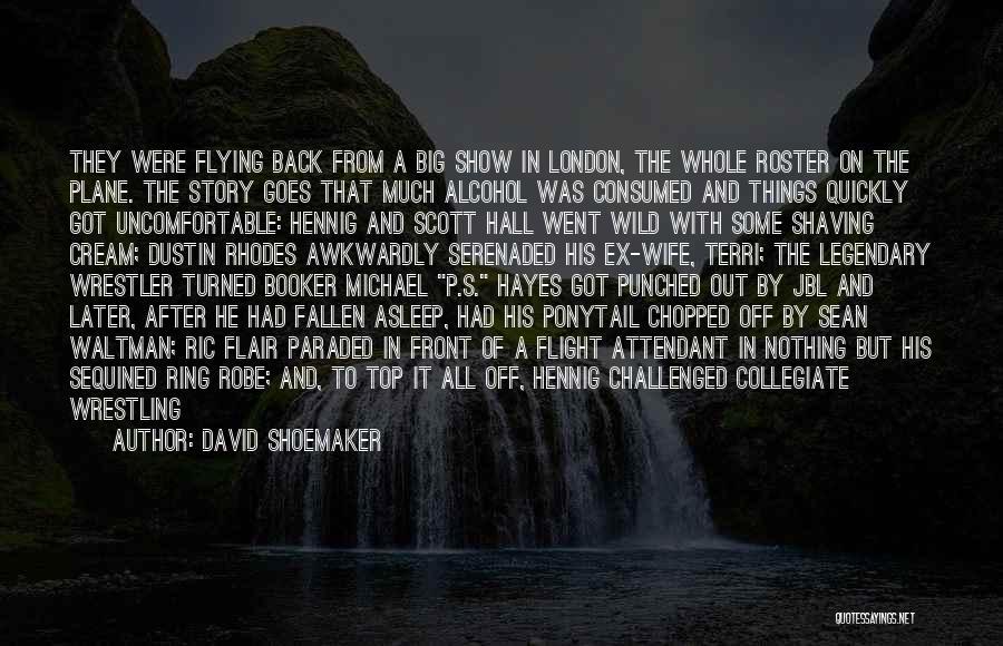 Flight Attendant Flying Quotes By David Shoemaker