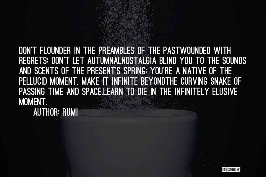 Flounder Quotes By Rumi