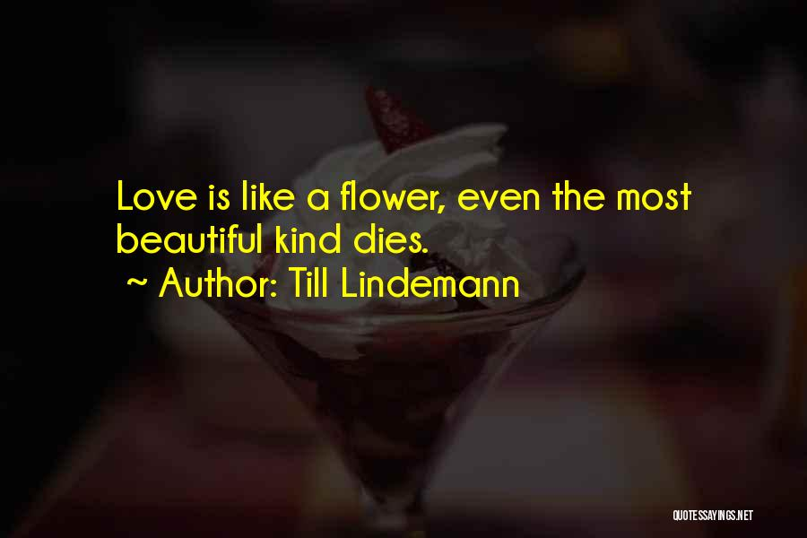 Flower Beautiful Quotes By Till Lindemann