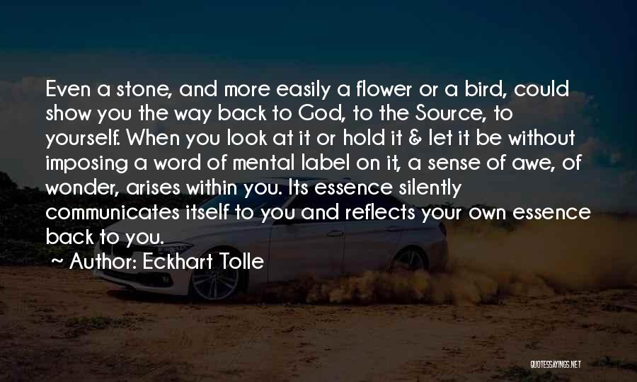 Flower Essence Quotes By Eckhart Tolle