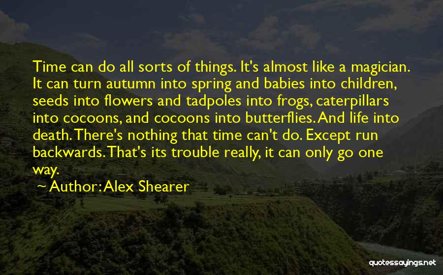 Flowers And Butterflies Quotes By Alex Shearer