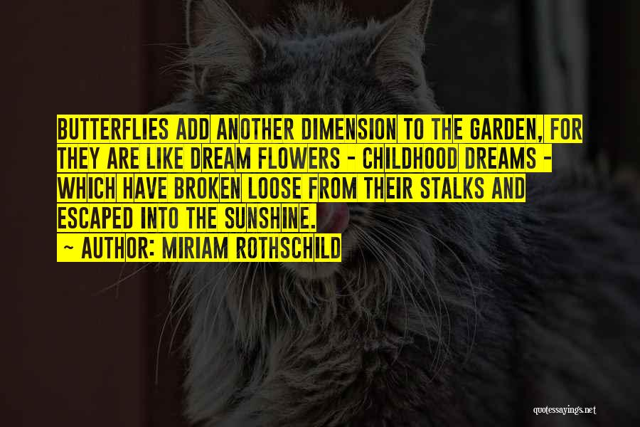 Flowers And Butterflies Quotes By Miriam Rothschild