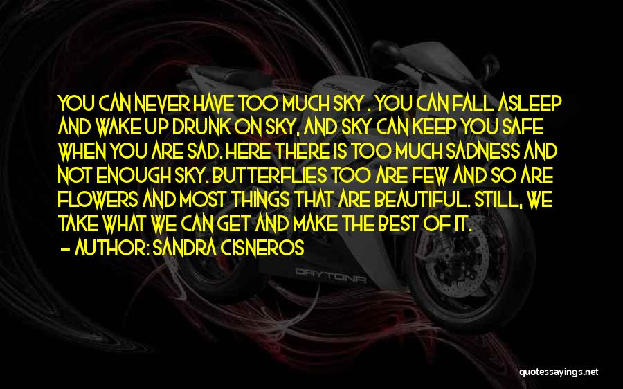 Flowers And Butterflies Quotes By Sandra Cisneros